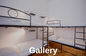 sophies hostel gallery